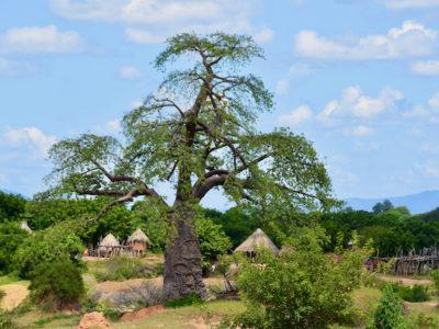 Zambia Dorp4