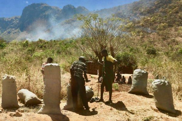 Uganda_charcoal