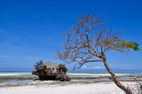 Zanzibar_TheRock