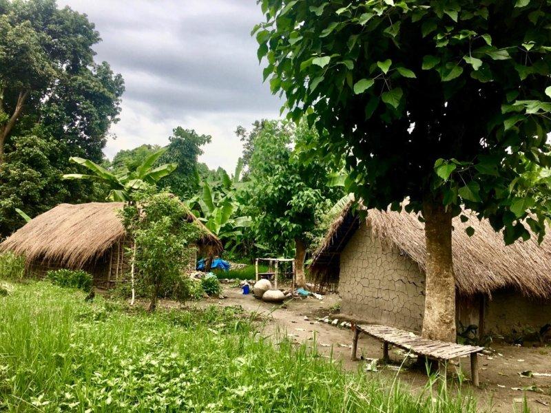 Tanzania_Nyassa_Ikombe1