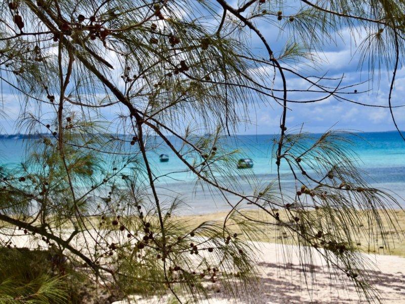 Zanzibar_Changgu1
