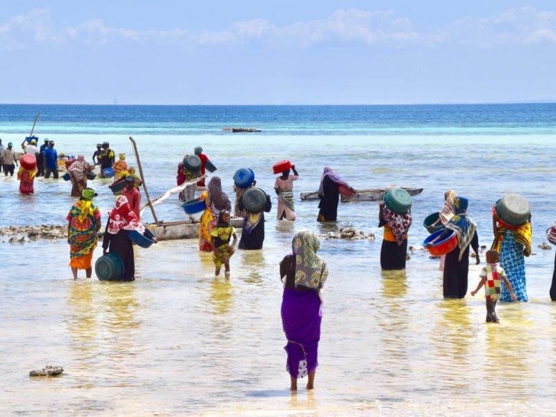 Zanzibar_Kizimkazi2